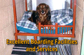 Boarding Services at CLAH