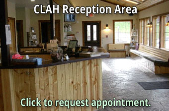 Schedule Appointment at Cheat Lake Animal Hospital