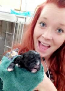 Tabitha Holzapfel : Veterinary Assistant