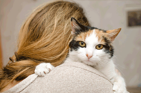 Calico cat on woman's shoulder