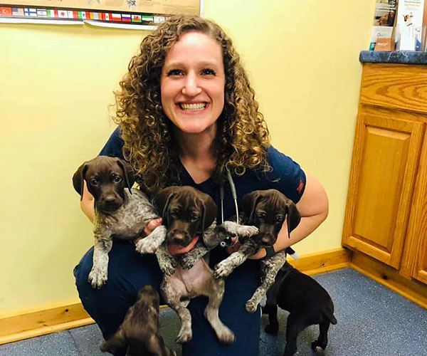 German shorthaired pointer puppies and Dr. Jodi Richardson
