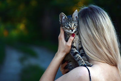 Kitten on woman's shoulder