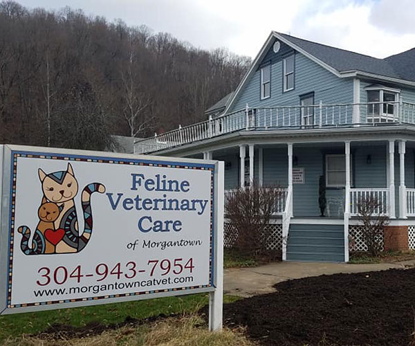 Photo of Feline Veterinary Care exterior